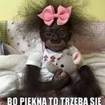 Malgorzata Swistak
