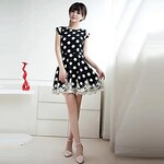 LightInTheBox Summer Stitching Lace Chiffon Sleeveless Polka Dot Dress Temperament Slim Bottoming Skirt
