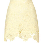 Topshop Cut Out Rose Lace Skirt