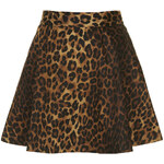 Topshop **Skater Skirt by WYLDR