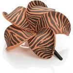 Dolly Martin Frangipani Wild XS Zebra