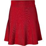 Steffen Schraut Avenue Flared Skirt