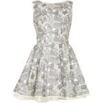 Topshop **Vivienne Liberty Print Dress by Jones and Jones