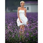 LightInTheBox Ball Gown Strapless Short/ Mini Taffeta Wedding Dress