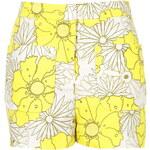 Topshop Sunrise Floral Print Shorts