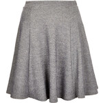 Topshop **Skater Skirt by Annie Greenabelle