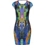 McQ Alexander McQueen Print Dress