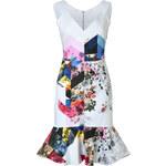 Preen by Thornton Bregazzi Morgan V-Neck Printed Flare Dress