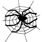 Fiestas Guirca Obří síť s pavoukem 240 x 240cm