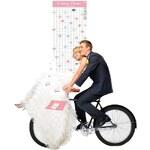 DOIY Svatební plánovač Dream Wedding