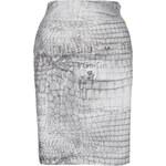Galliano Dámská sukně YR735072405_grau mit print S824 / 38