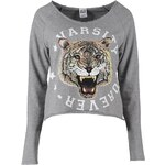 Vero Moda ANGRY TIGER Sweatshirt light grey melange