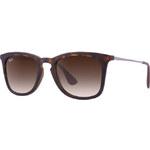 Ray-Ban Unisex sluneční brýle RB42218651350