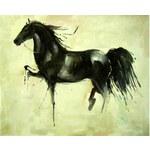 Obraz - Černý kůň