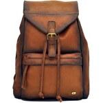 Kožený batoh Daag Native 5