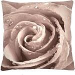 Polštář Růže bílá