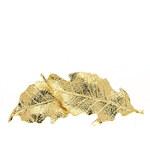 Spona na vlasy listy stříbrné středné