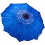 Blooming Brollies Dámský skládací plně automatický deštník Galleria Floral Blue Daisy GFFDB