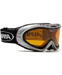 ALPINA SPORT Skibrille, silber, für Brillenträger, Alpina, »Opticvision«, Made in Germany
