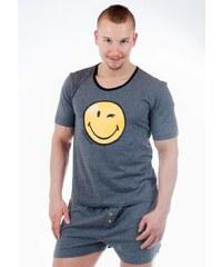 Pyžamo Smiley World AI 24131 S Tm. šedá, šedá - tmavě
