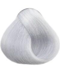LOVIEN ESSENTIAL LOVIN Color barva na vlasy 100ml - Silver Grey 12.1