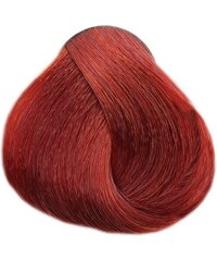 LOVIEN ESSENTIAL LOVIN Color barva 100ml - Light Copper Mahogany Blonde 77.44