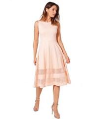 BOOHOO MIA Růžové skater šaty s průsvitnými pruhy f81a40e178