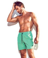 Pánske plavkové šortky DAVID 52 Basic Caicco 041A tyrkysová 9f5ac68e39