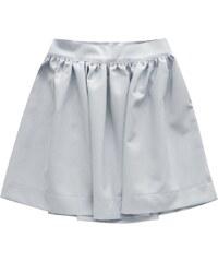 INPRESS Šedá rozšířená sukně se zipem (88ART) abb21d05d1