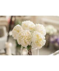 Silk ka flowers for life khaki glami silk ka flowers for life pivoka silk ka bl 61 cm mightylinksfo