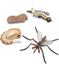 Safari LTD Životní cyklus - Komár 2dbe812ada