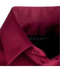 0a9ca32ad17f Bordó pánska košeľa s dlhým rukávom slim Assante 30371