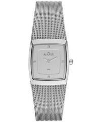 25366eabe1 Dámske hodinky Skagen 380XSSS1 (22 mm)