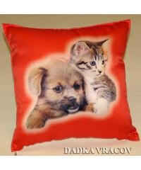 Dadka Fotopolštářek - Kotě a pes na červeném
