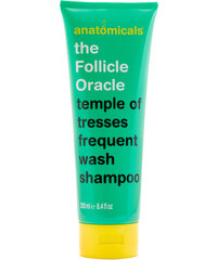 Anatomicals - The Follicle Oracle - Shampooing 250 ml - Clair