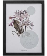 Bloomingville Obrázek v rámu Flower