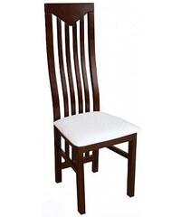 Jídelní židle 15