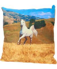 TopMode Polštářek fototisk bílý kůň