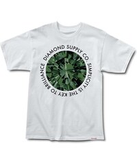 triko DIAMOND - Simplicity White Green (WHGN)