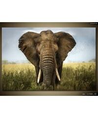 ART Obraz 120 x 80 cm 1150A_1B