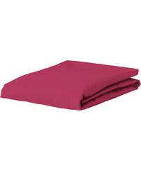 Drap housse uni jersey Premium de Essenza - 180/200 x 200/220 cm - framboise