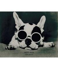 Bild Kunstdruck Robin Schwartz: Hot Dog 49/39 cm HOME AFFAIRE schwarz