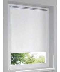 Rollo Heine Home weiß 2 = 150x60 cm,3 = 150x75 cm,5 = 150x120 cm,6 = 210x90 cm