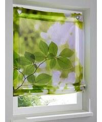 Heine Home Raffrollo grün ca. 140/100 cm,ca. 140/120 cm,ca. 140/45 cm,ca. 140/60 cm,ca. 140/80 cm