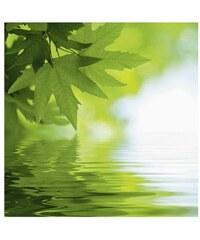 Glasbilder in 2 Größen und 3 Motiven Wasserspiele Artland grün