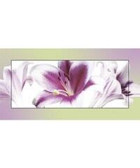 Wandbild Schönebilder 102/52 cm HOME AFFAIRE lila