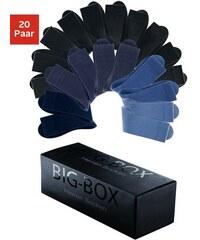 Basic-Socken (20 Paar) in der Big-Box Cotton Republic bunt 35-38,39-42,43-46,47-50