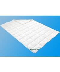 Naturfaserbettdecke Clean Cotton leicht Leicht Badenia