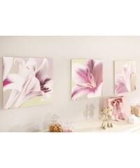 Set: Bilder (3tlg.) Artland rosa