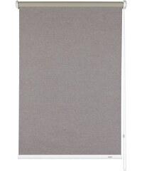 Seitenzugrollo Melange Verdunkelung Fixmaß Gardinia braun 1 (H/B: 180/52 cm),2 (H/B: 180/62 cm),3 (H/B: 180/82 cm),4 (H/B: 180/92 cm),5 (H/B: 180/102 cm)